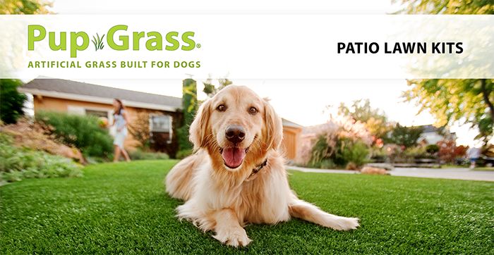 Pup Grass Patio Lawn Kit